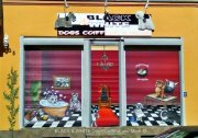 BLACK & WHITE Dogs Coiffeur and More ©